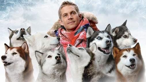 Найкращі друзі: 5 зворушливих фільмів про собак